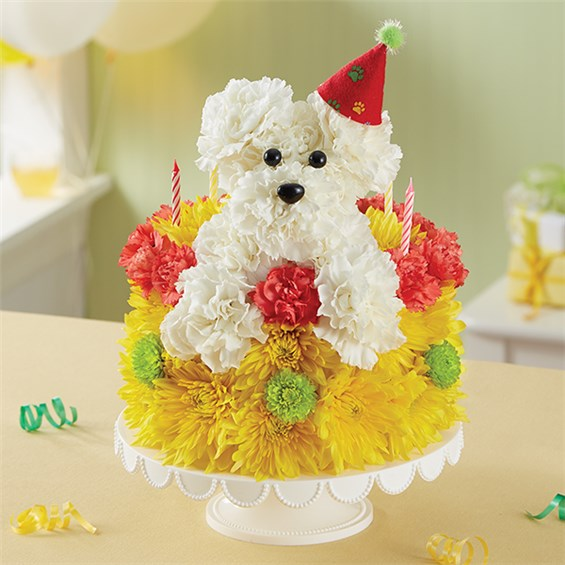 Astounding 1 800 Flowers Birthday Wishes Flower Cake Pupcake San Antonio Tx Funny Birthday Cards Online Elaedamsfinfo
